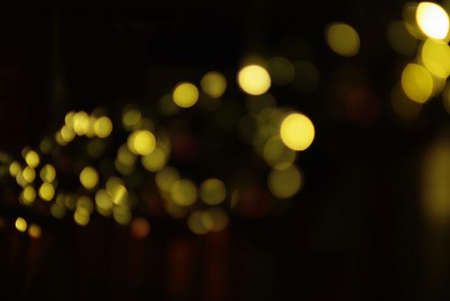 IMGP2136_xmas-city-lights