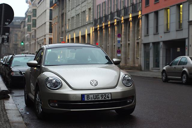 IMGP2813_beetle-bug