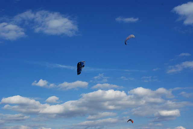 IMGP3289_kites