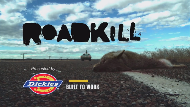 screenshot-roadkill