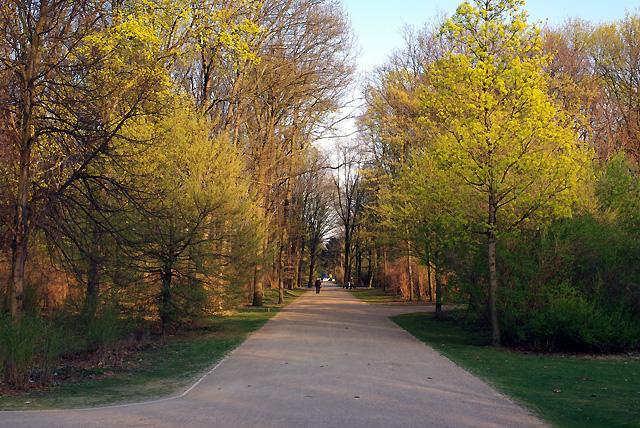 IMGP7795_tiergarten