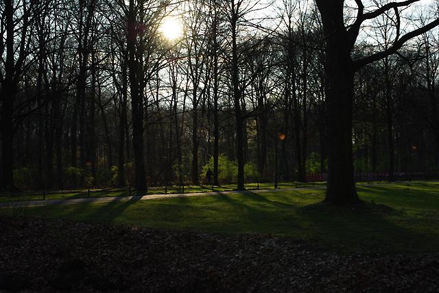 IMGP7801_tiergarten