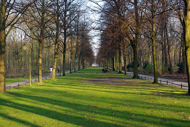 IMGP7802_tiergarten