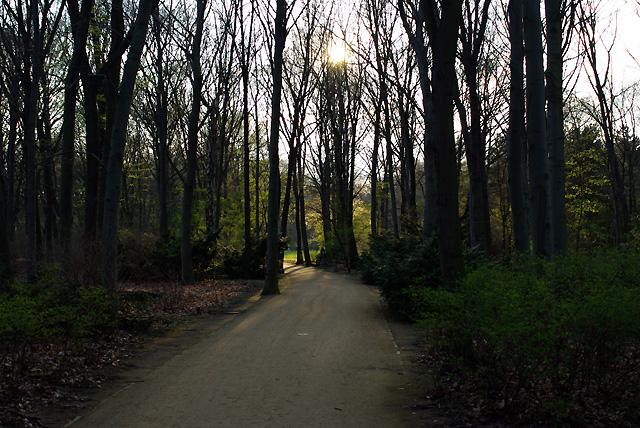 IMGP7808_tiergarten