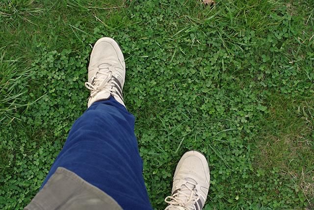 IMGP7907_grass-walking