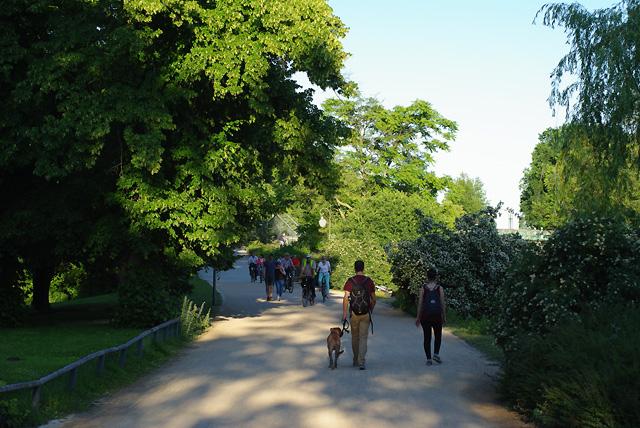 IMGP8324_im-tiergarten