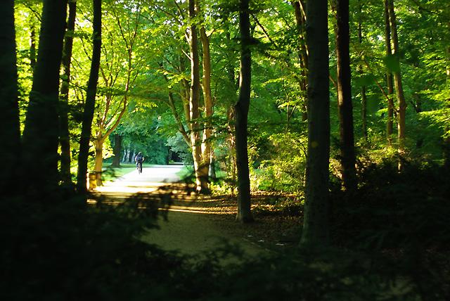 IMGP8332_im-tiergarten