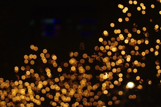 IMGP9214_citylight