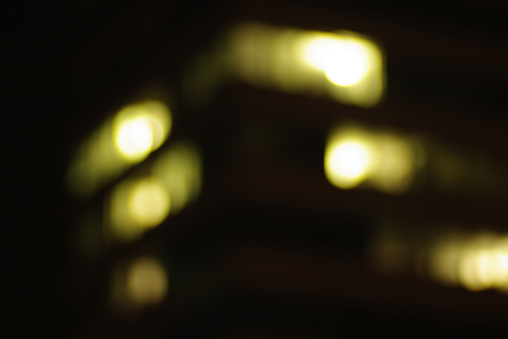 IMGP9221_citylight