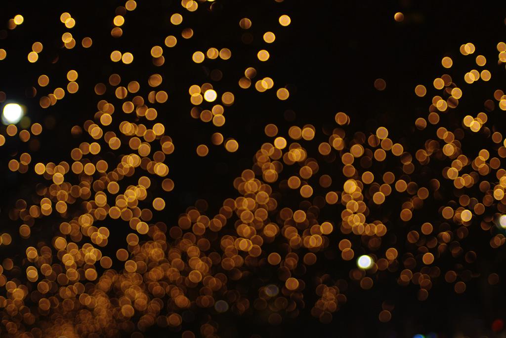 IMGP9225_citylight
