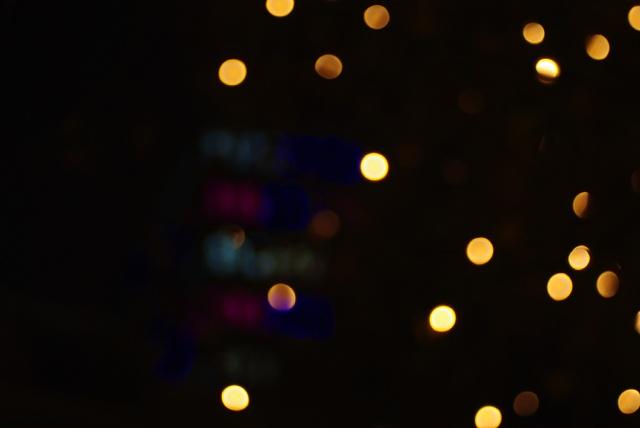 IMGP9228_citylight