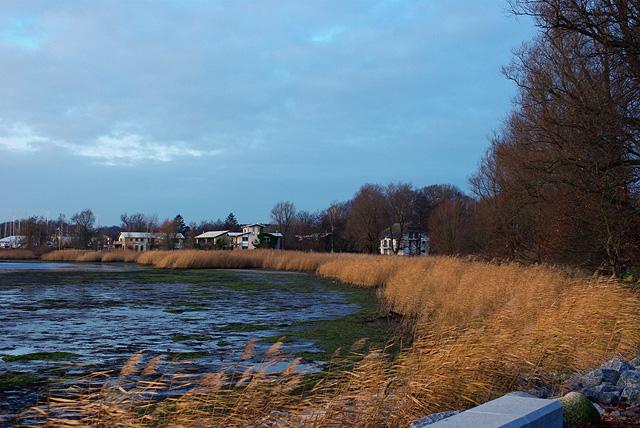 IMGP9281_lauterbach-hafen