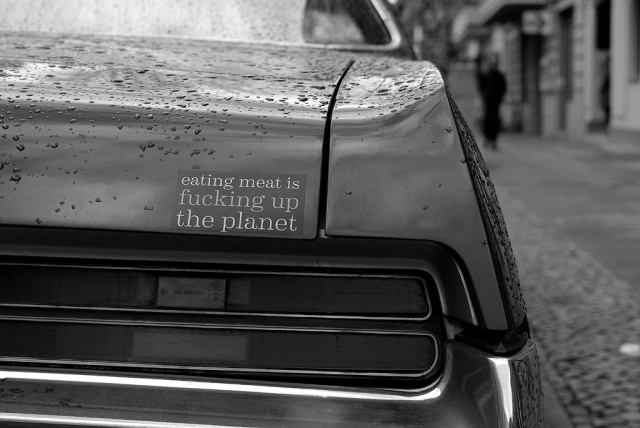 IMGP9640_buick-bumper-sticker-fucking-up-the-planet_B-SW
