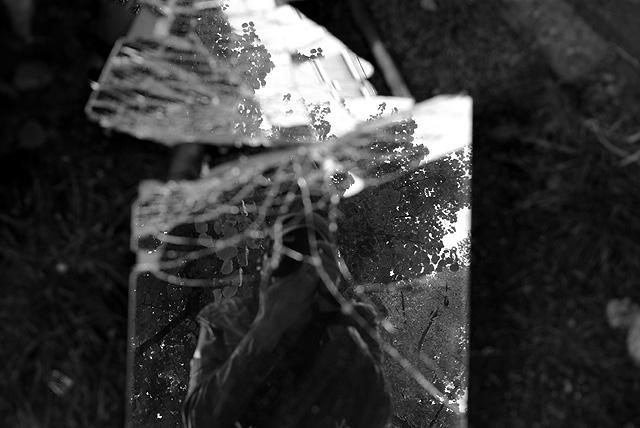 IMGP9846_fotograf-in-zerbrochenem-spiegel_B-SW