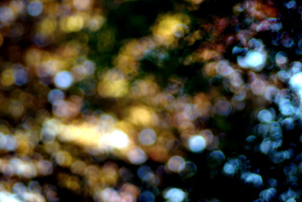 IMGP10331_bokeh-lights-orbitalfusion_B