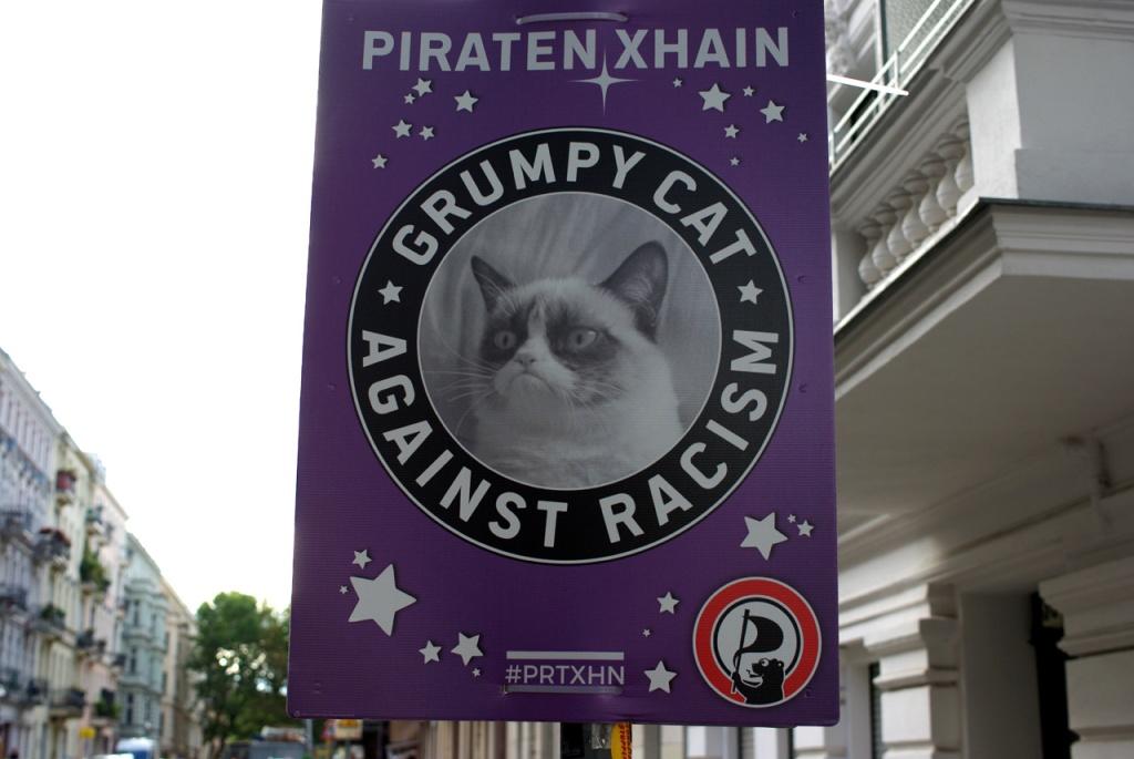 imgp10582_grumpycat-piratenpartei-wahlplakat