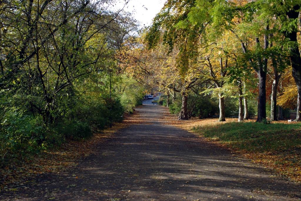 imgp10710_viktoriapark-ausgang-westen