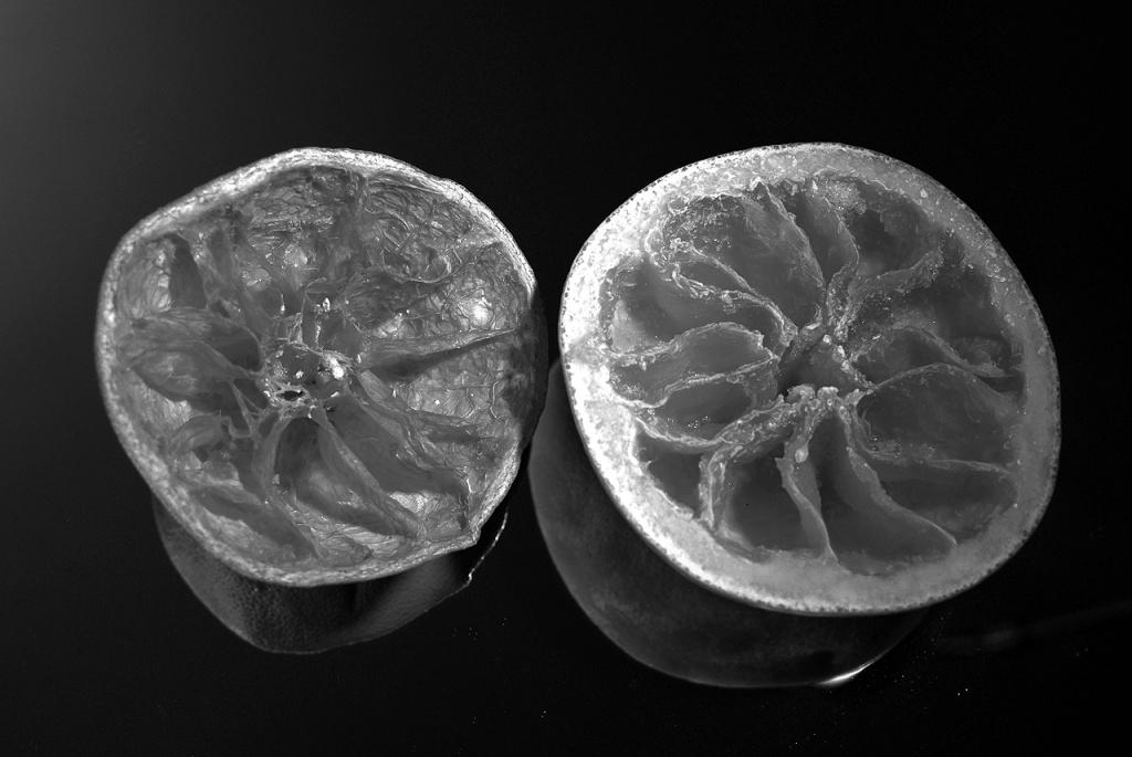 imgp10833_grapefruits-gefroren-getrocknet_sw